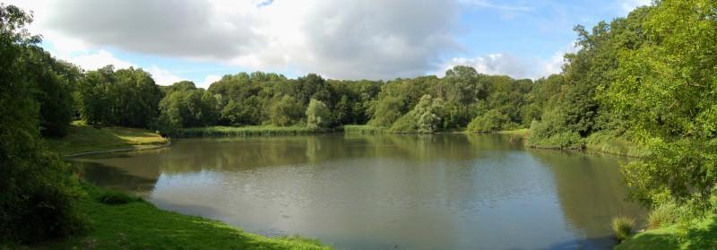 randonnées hauts de seine - l'étang du trou au gant - crédit Jerome Rattat -