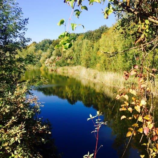 randonnées seine saint denis - forêt régional de bondy - tourisme93