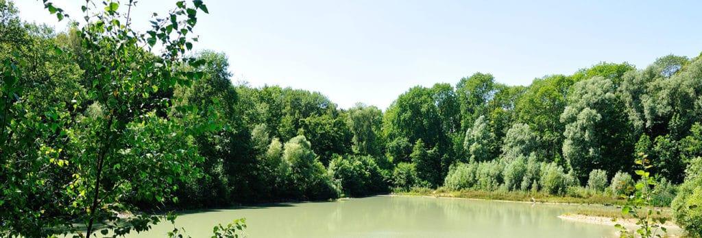 randonnées val d'oise -forêt de carnelle - saintmartin95.com
