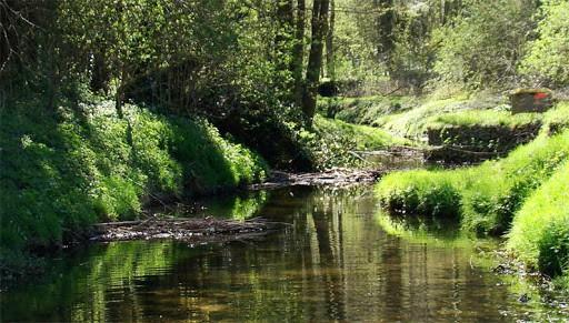 randonnées yvelines - Parc naturel régional vallée de chevreuse -