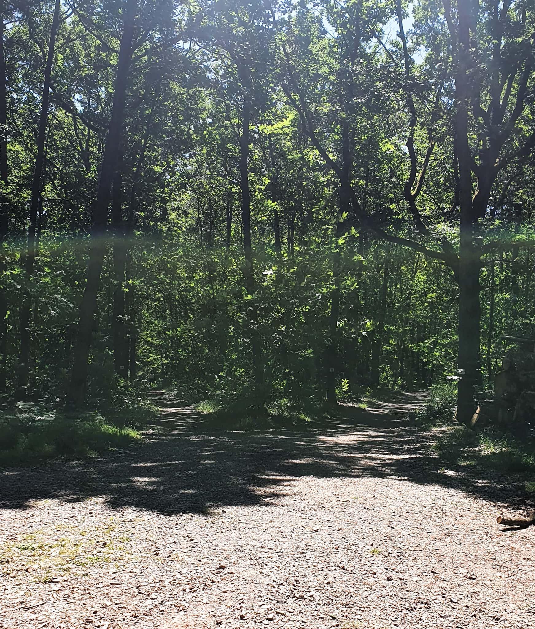 Randonnée Chevreuse - Ma Petite Banlieue 1